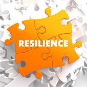 Resilience on Orange Puzzle.