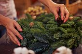 Female hands on coniferous wreath