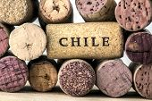 Wine bottle corks of Chile 05