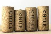 Wine bottle corks of Chile 07