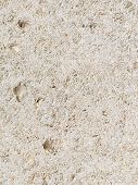 stock photo of slab  - light beige stone with multiple patches of shells in a large slab - JPG