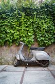 pic of vespa  - Moped parked on the street near the fence, waiting for his master moped beautiful background pictures.