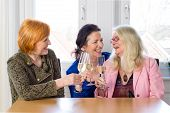 stock photo of three life  - Three Happy Mom Friends Enjoying Glasses of Champagne at the Table Inside a Restaurant While Talking Funny Stories of their Lives - JPG