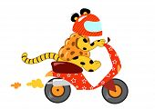 stock photo of vespa  - Strange funny animal with a motorbike full of shopping bags - JPG