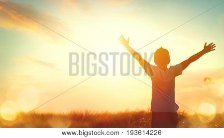 poster of Little boy raising hands over sunset sky, enjoying life and nature. Happy Kid on summer field lookin
