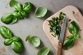 Freshly chopped basil leaves. Fresh basil on a wooden chopping board.  poster