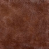 Brown leather texture. (high res. scan)