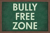 Bully Free Zone At Schools