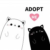Black And White Cat Head Face Icon Set. Adopt Me. Cute Cartoon Kawaii Funny Character. Line Contour  poster
