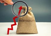 Bag With The Word Profitability And An Up Arrow. High Economic Efficiency And Profitableness. Busine poster