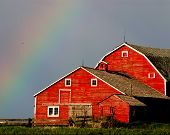 picture of barn house  - late afternoon light combines with the end of a summer rain to provide wonderful light and a rainbow over this red hip barn - JPG