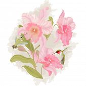 Vector card with a branch orchid and birds colibri
