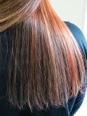 Gradient Color On The Hair. Multi-colored Hair. Colored Staining Of The Hair. poster