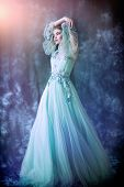 A full length portrait of a mysterious lady in a fluffy dress posing indoor. Fairy tale, fashion. poster