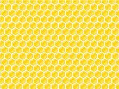 abstract vector honeycomb pattern