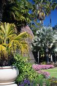 Botanical House Grounds