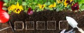 Gardening Tools And Paper Pots On Soil Background. Planting Spring Pansy Flower In Garden. Spring Ga poster