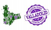 Vector Collage Of Grape Wine Map Of Valladolid Province And Purple Grunge Seal Stamp For Premium Win poster