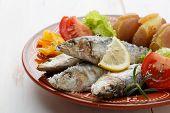 dish of portuguese sardines