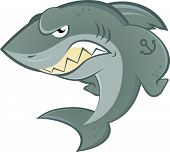 angry cartoon shark
