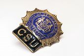 New York Poilice Badge