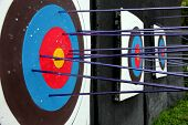 Target Archery And Many Arrow.