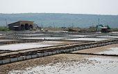 Salt Crystallization Fields At Seca