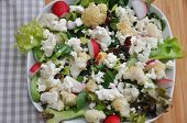 Vegetable salad with cauliflower and red radish
