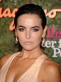 LOS ANGELES - OCT 17:  Camilla Belle arrives to the Wallis Annenberg Center for the Performing Arts Gala  on October 17, 2013 in Beverly Hills, CA