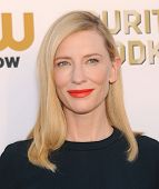 LOS ANGELES - JAN 16:  Cate Blanchett arrives to the Critics' Choice Movie Awards 2014  on January 1