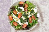 Fresh italian salad with mozzarella