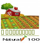 Illustration of a natural label and a farm on a white background