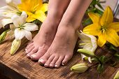 Female feet with spa pedicure and flowers