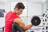 Side view of a young muscular man exercising with dumbbell in gym