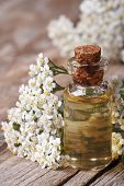 Tincture Of Yarrow Close-up On A Background Of Flowers