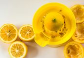Lemon Juice Squeezer