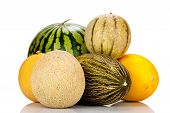 Different Varieties Of Melons