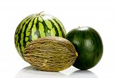 picture of muskmelon  - Three Different varieties of melons mirrored and isolated on white Background - JPG