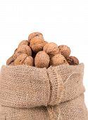 Walnuts in burlap bag.