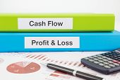 Cash Flow, Profit & Loss Documents With Reports