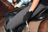 foto of breed horse  - Close up of rider in saddle on chestnut horse - JPG