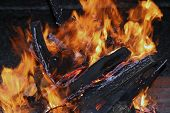 image of flames  - Fire logs in flame - JPG