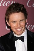 LOS ANGELES - JAN 3:  Eddie Redmayne at the Palm Springs Film Festival Gala at a Convention Center on January 3, 2014 in Palm Springs, CA