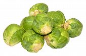 Brussels Sprouts Isolated