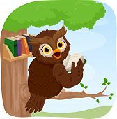Illustration of an Owl Reading a Book While Perched on a Tree