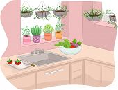Illustration of a Kitchen Decorated with Indoor Plants