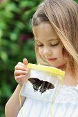 Kind aufzeichnende Schmetterlinge