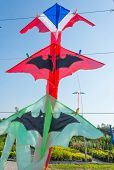pic of kites  - Thailand flag color kite and bat kites hanging on string - JPG