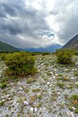 pic of mountain chain  - Green bushes in steppe mountains - JPG