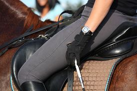 stock photo of horse-riders  - Close up of rider in saddle on chestnut horse - JPG